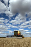 A farmer harvests a broadacre paddock of wheat. Royalty Free Stock Image