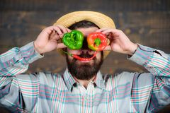 Farmer having fun wooden background. Man hold pepper harvest as funny grimace. Chilli and sweet pepper as smile and eyes. Bearded farmer hold peppers in front stock photo