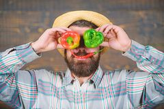 Farmer having fun wooden background. Man hold pepper harvest as funny grimace. Chilli and sweet pepper as smile and eyes. Bearded farmer hold peppers in front stock photos