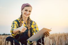 Farmer having harvest finished showing thumps-up stock photography
