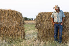 Farmer with Hay Bales. Farmer at Sunset Standing with Hay Bales royalty free stock photography