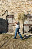 Farmer with hay. For feeding the livestock royalty free stock photography