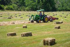 Farmer Haying Field Royalty Free Stock Photography