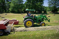 Farmer Haying Field Stock Image