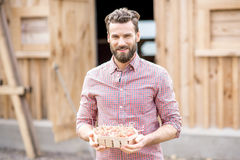 Farmer with hen eggs Royalty Free Stock Image
