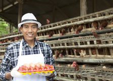 Farmer in hen house Stock Image