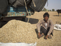 Farmer beside his harvest. Royalty Free Stock Photography