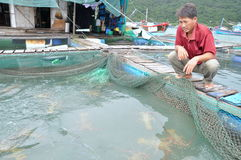A farmer with his lobster farming cage in the Vung Ro bay in Vietnam Royalty Free Stock Photos