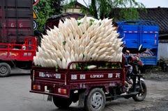 Pengzhou, China: Truckload of White Radishes Royalty Free Stock Photography