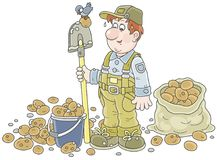 Farmer with his potato crop. Smiling gardener with a spade and potatoes in a bucket and a sack, vector illustration in a cartoon style Stock Image