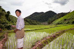 Farmer and his rice field Stock Photo