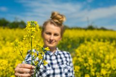 Farmer hold flower. Female farmer hold single flower in hands against field royalty free stock photography