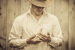 Farmer Holding a Baby Turkey Royalty Free Stock Image