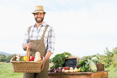 Farmer holding basket of vegetables at market. On a sunny day Stock Image