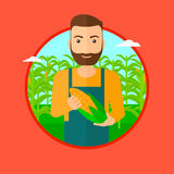 Farmer holding corn. A hipster man with the beard standing in the field and holding a corn cob. Vector flat design illustration in the circle isolated on red Stock Photography