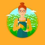 Farmer holding corn. Royalty Free Stock Photo
