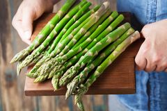 Farmer holding the harvest of young sprouts of asparagus. Organic vegetables. royalty free stock images