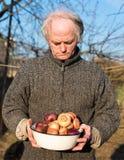 Farmer holding organic onion royalty free stock photography