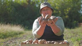 The farmer holding potatoes. Healthy food with vitamins. Fresh and organic food. Concept of vegetarians, organic and. The farmer is holding a biological product stock footage