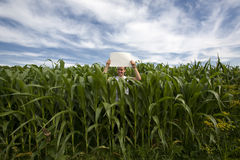 Farmer holding sign in Corn Field. A young farmer man holding a blank sign in his cornfield Stock Photo