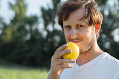 Farmer holding small melon near face and looking at camera organic melon farm. Young farmer holding small yellow melon near face, looking at camera and smiling Stock Images