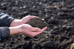 Farmer holding soil in hands in field. Close up of farmer`s hands holding soil in the field. Farming concept Royalty Free Stock Photography