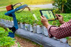 Farmer holding a tablet smart arm robot work agricultural machinery stock image