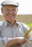 Farmer holding wheat stalk Royalty Free Stock Photography