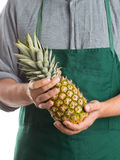 Farmer holding whole fresh pineapple fruit Royalty Free Stock Photography