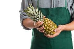 Farmer holding whole fresh pineapple fruit Stock Images