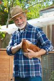 Farmer holds chicken in his arms in front of hen house stock photography