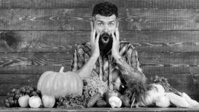 Farmer with homegrown crops on table. Vegetables organic harvest. Farmer shocked because of bright vegetables. Farming. And harvesting concept. Man bearded look stock photography