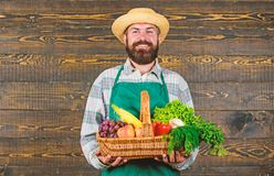 Farmer with homegrown vegetables in basket. Man bearded farmer presenting eco vegetables wooden background. Fresh. Organic vegetables in wicker basket. Farmer royalty free stock image