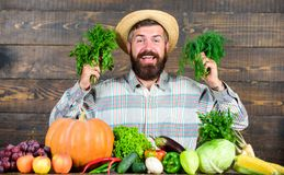 Farmer with homegrown vegetables harvest. Organic pest control. Excellent quality harvest. Man with beard proud of his. Harvest wooden background. Organic royalty free stock photography