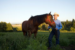 Farmer and Horse - horizontal Stock Image