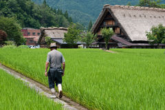 Farmer In Shirakawago Stock Image