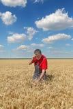 Farmer inspect wheat field Stock Photos