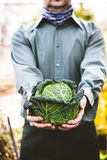 Farmer with kale Royalty Free Stock Images