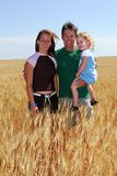 Farmer and Kids. A happy farmer and daughters pose in a durum wheat field royalty free stock photography