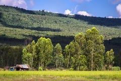Farmer land Royalty Free Stock Image