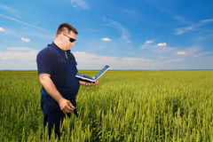 Farmer with laptop Inspecting Wheat Royalty Free Stock Photos