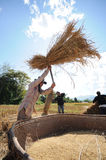 Farmer life in northern of Thailand Royalty Free Stock Images