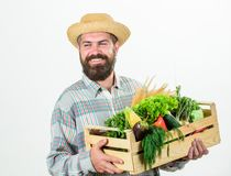 Farmer lifestyle professional occupation. Buy local foods. Farmer rustic bearded man hold wooden box with homegrown royalty free stock photos