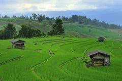 Farmer living Stock Photo
