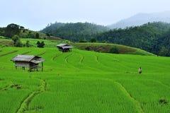 Farmer living stock image