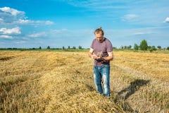 Farmer checks the quality of grain stock image
