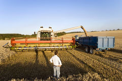 Farmer looking at harvester Stock Photo