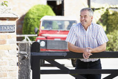 Farmer Looking Over Farm Gate Royalty Free Stock Photography