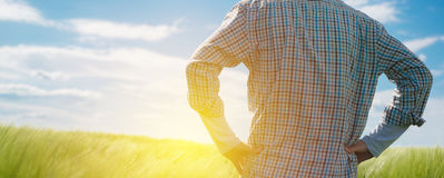 Farmer looking at the sun on the horizon. Over cultivated wheat crops field Stock Photography