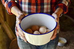 Farmer man with chicken eggs. Closeup of a young caucasian farmer man wearing a plaid shirt with a white vessel in his hands with some fresh chicken eggs Royalty Free Stock Images
